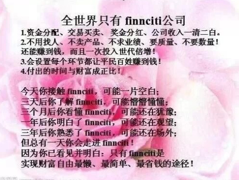 全世界只有Finnciti公司