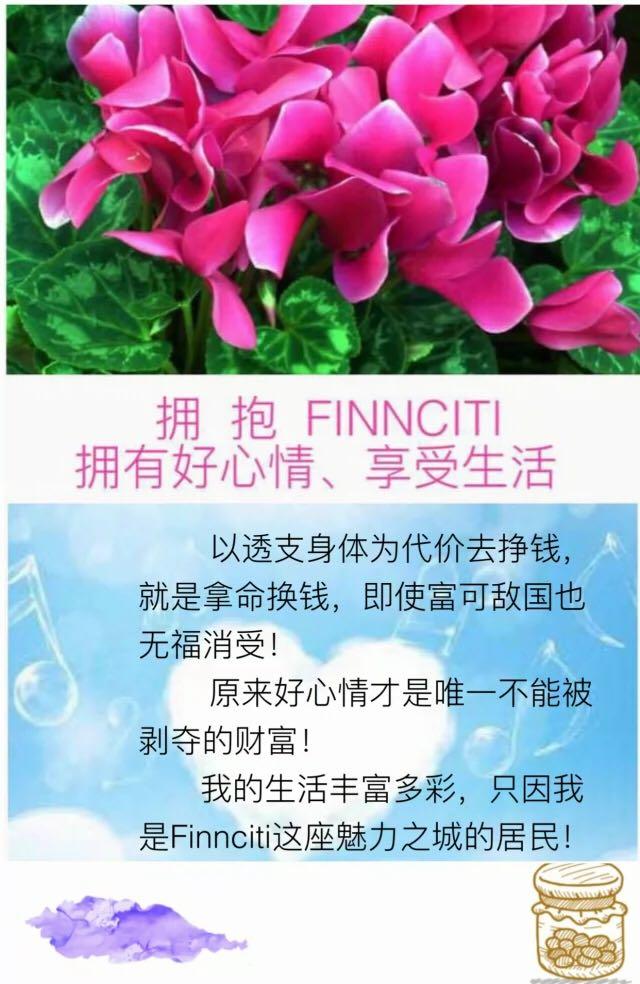 20161103-finnciti